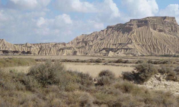 Parque natural de las Bárdenas Reales
