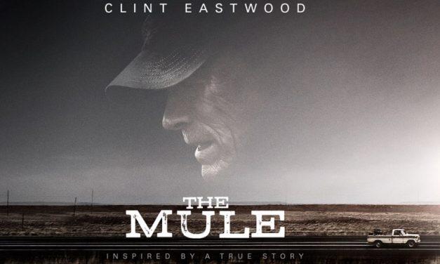 NVOC Filmtip: The Mule